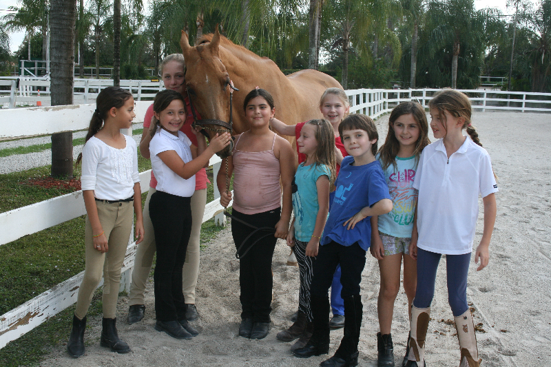 Saddle Club