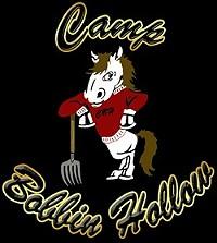 Camp Bobbin Hollow Logo