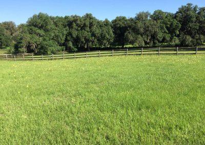 pasture-fence-daytime