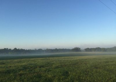 pasture-open-morning-mist